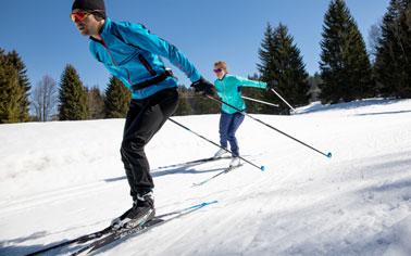 Rent Salomon Skate Ski Package